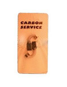 CHARBON 6X8X25 SOUS BLISTER...